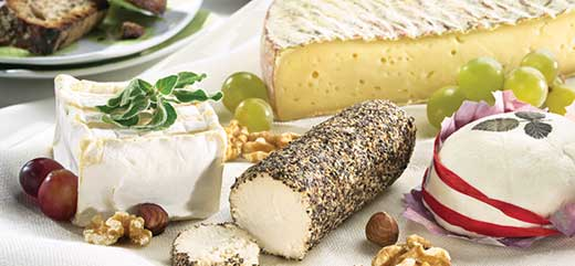 The Fromage Plate | French Cheese Tasting Platters Wine and Cheese Pairings | Cheeses of France : cheese plate pairings - Pezcame.Com